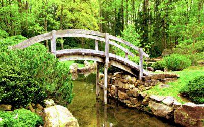 Van Spirituele Stilstand tot Beweging